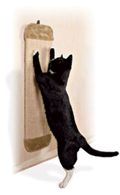 Wall Mountable Scratching Board
